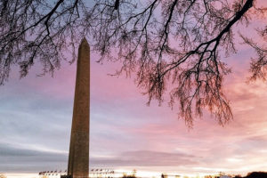 Washington DC Private Tours